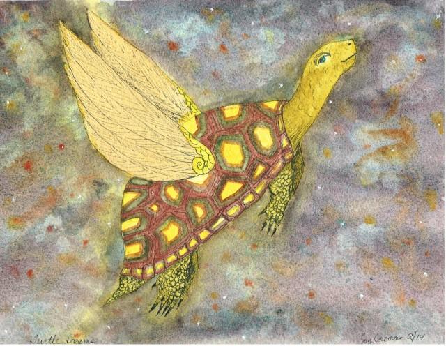 Turtle Dreams 001
