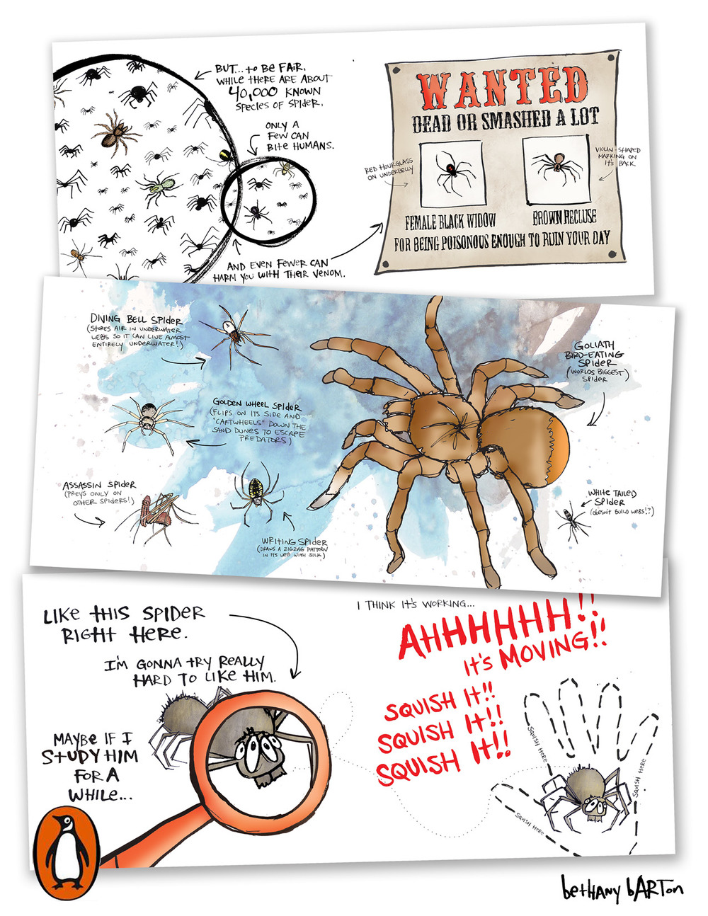 SPIDERS12