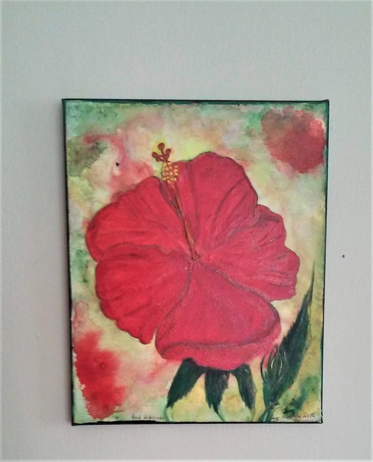 red hibiscus on wall